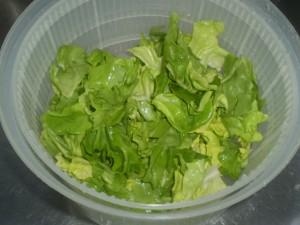caribbean-salad-11
