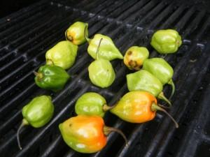 habanero pepper choka
