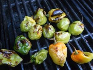 pepper choka recipe