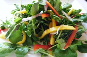 caribbean watercress salad