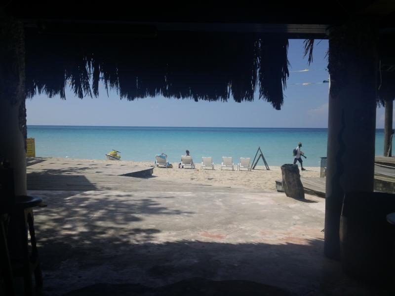 jamaican food (23)