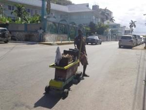 jamaican food (27)
