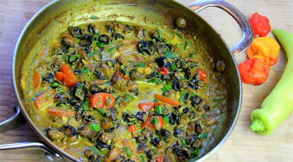 curry conch recipe (1)