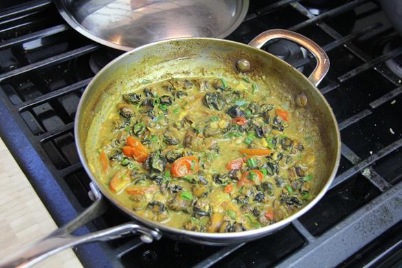 curry conch recipe (11)
