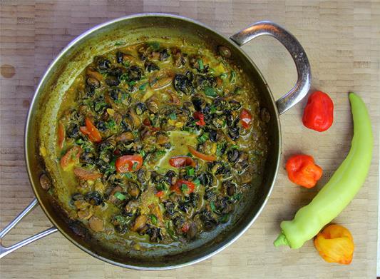 curry conch recipe (12)