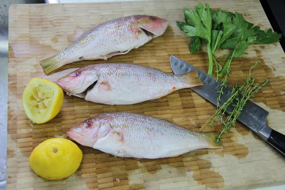 jamaican escovitch fish (6)