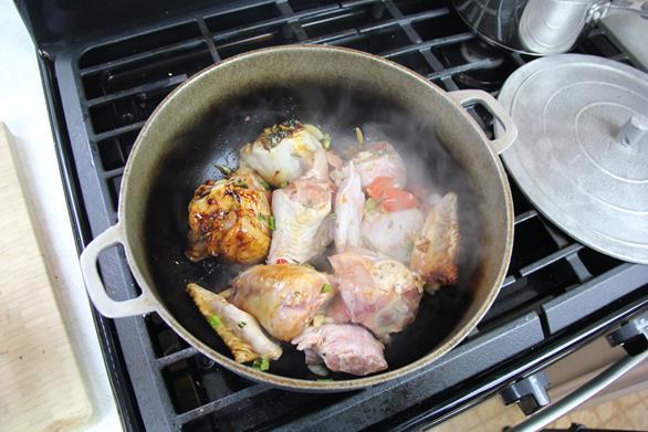 stewed turkey wings (7)