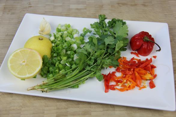 chicken chow recipe (1)