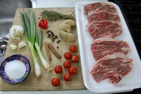 lamb stew (6)