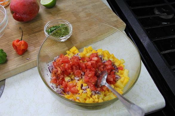 caribbean salsa (2)