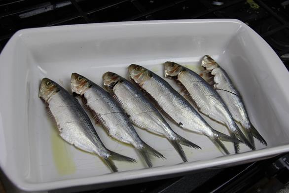 grilled sardines (2)