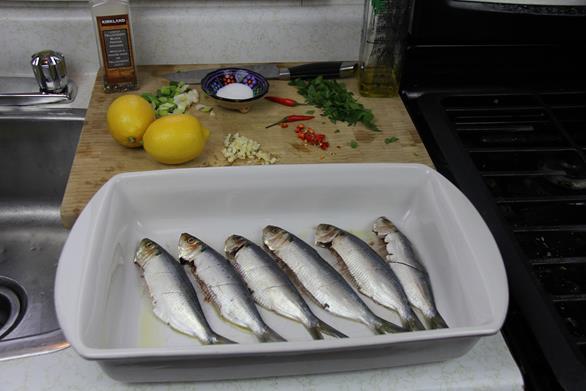 grilled sardines (3)