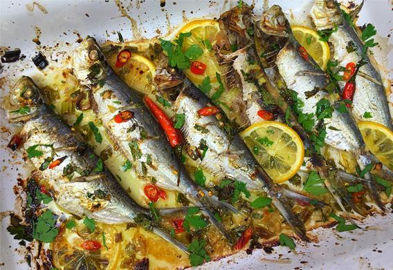 grilled sardines (7)