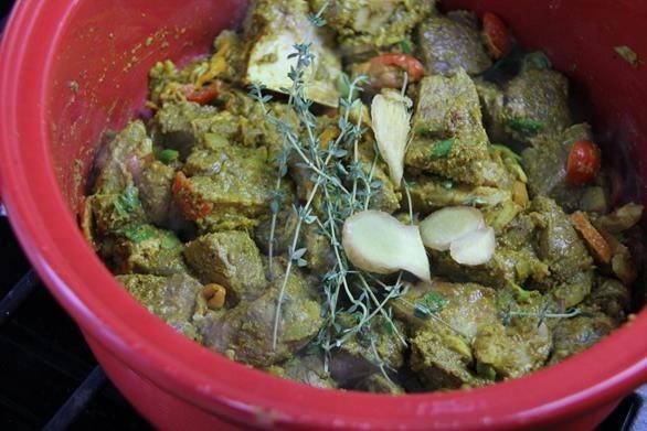 coconut curry venison (6)