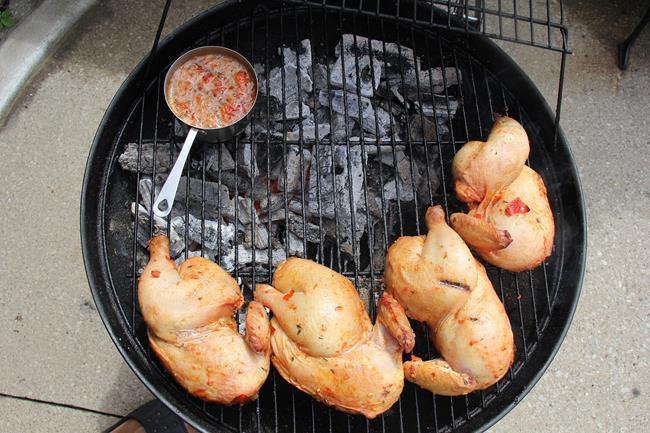 peri peri chicken (5)