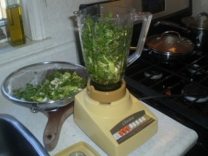 trinidad-green-seasoning-recipe