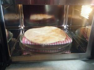 microwave roti