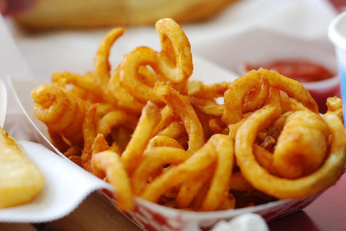Curly Fry Cutter review