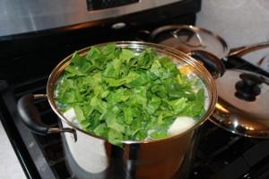 sancoche soup  (14)