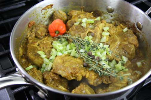 curry oxtails (9)