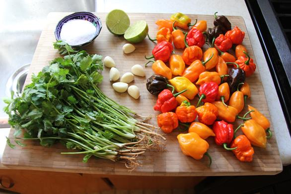 traditional caribbean peppersauce (4)