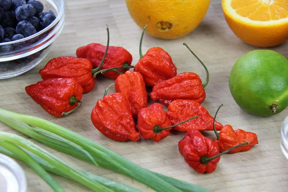 Trinidad Moruga Scorpion Peppersauce Recipe (2)