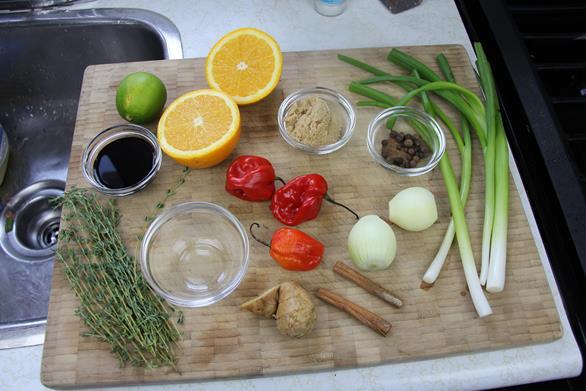 gluten free jamaican jerk chicken (1)