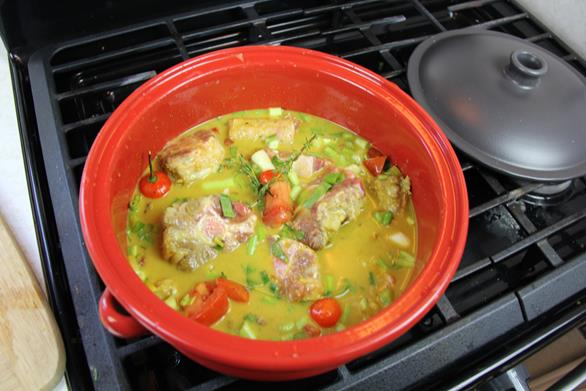 coconut curry oxtails (6)