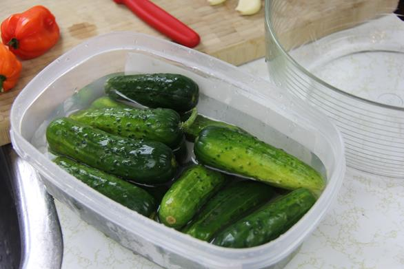 spicy cucumber salad (2)