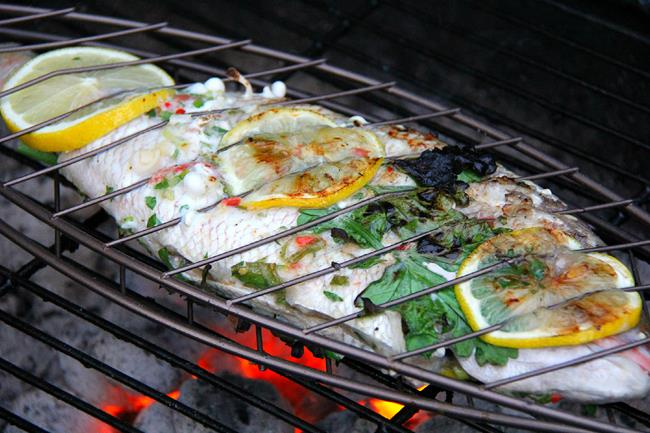 herb grilled fish (8)