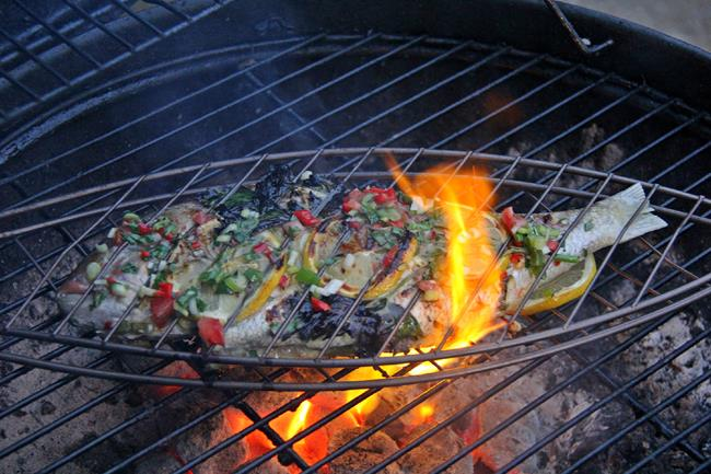 herb grilled fish (9)
