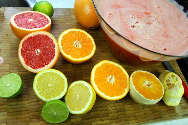 fruit punch recipe (6)