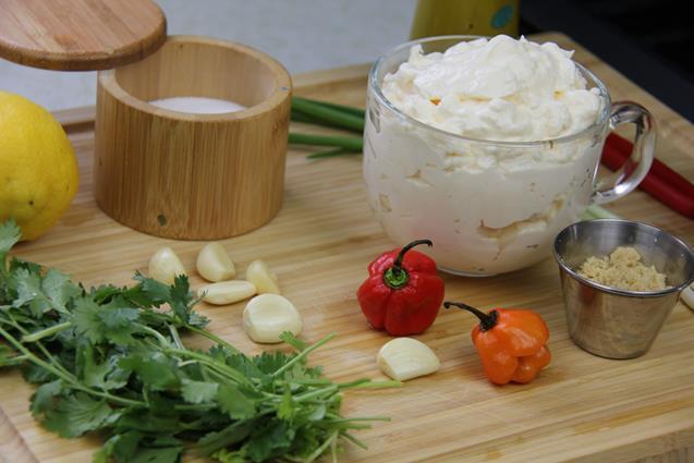 garlic sauce (1)